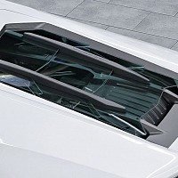 Engine Bonnet in Carbon (Coupe)