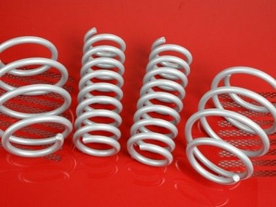 Brabus Sports Springs V639 for the Mercedes Benz Viano W639 1