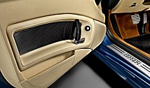 Door Trim (Carbon Fibre)