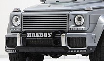 Front Grille without MB Star