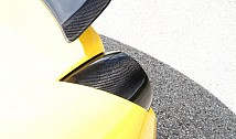 Tail Light Covers (Carbon)
