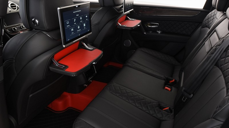 Startech leather upholstery Image 2