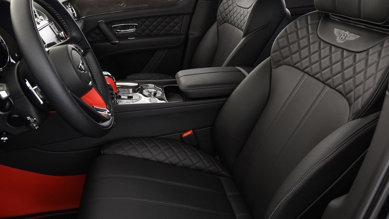 Startech leather upholstery Image 3