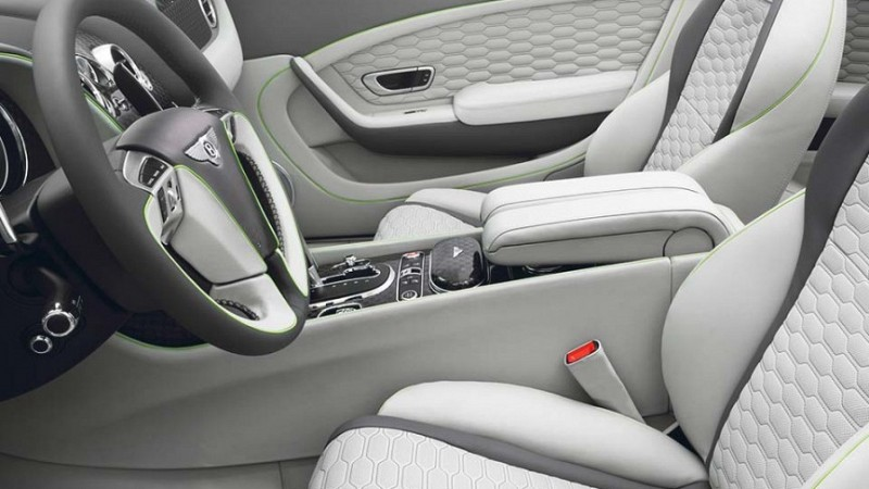 Startech Complete leather upholstery Image 2